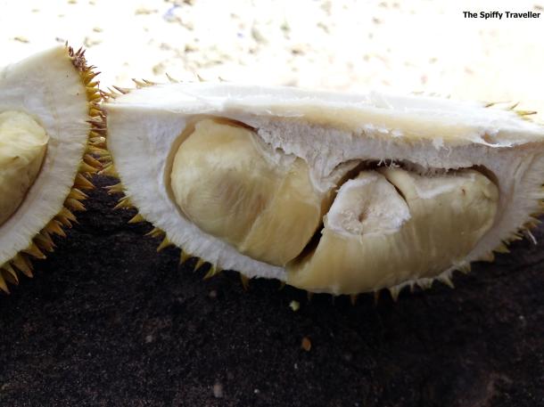 Durian Salakan