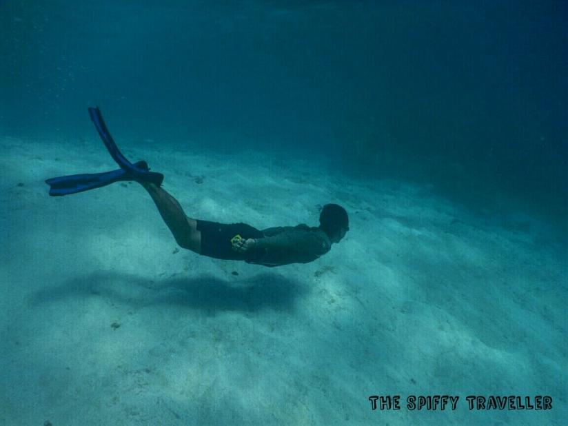 Free Dive Karimunjawa