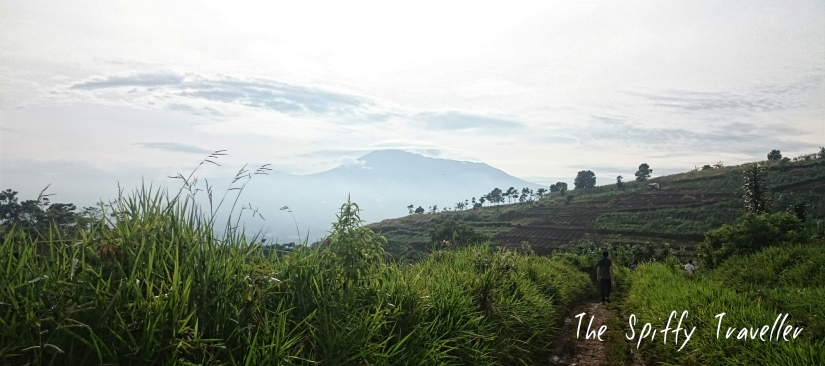 Curug Putri pelangi Bogor