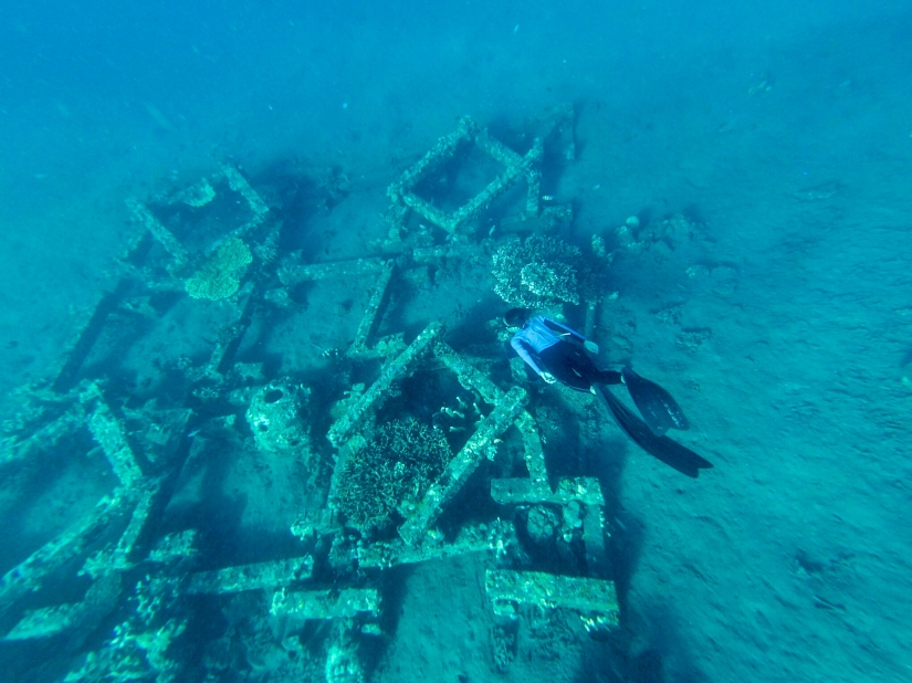 Freediving di Amed, Bali